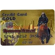 Магнит «карта банка»