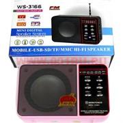 """Колонка-радио """"Hi-Fi"""" WS-3166"""