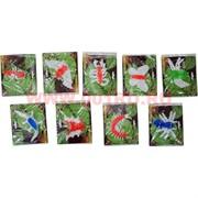 Лизуны животные и насекомые 9 видов, цветные (60 шт/уп, 720 шт/кор)