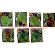 Лизуны животные и насекомые 9 видов, цветные прозрачные (60 шт/уп, 720 шт/кор)