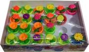 Растушки «цветы в горшках» 24 шт/уп