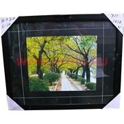 Картина в ассортименте (С10) 44х54 см, цена за 16 шт