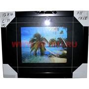 Картина в ассортименте (С11) 45х35 см, цена за 18 шт