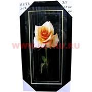 Картина в ассортименте (С11) 55х30 см, цена за 20 шт