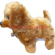Собачка гавкающая ходящая (140 шт\кор)