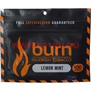 Табак для кальяна Burn 100 гр «Lemon Mint»