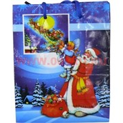 Пакет подарочный новогодний 12х15 см, цена за 24 шт (рисунки в ассортименте)
