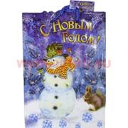Пакет подарочный новогодний 14х20 см (рисунки в ассортименте)
