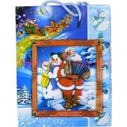 Пакет подарочный новогодний 32х44 см (рисунки в ассортименте)