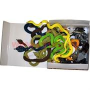 Змеи цветные растягивающиеся мягкие, цена за 24 шт