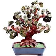 Денежное дерево №6 (25см) бронза
