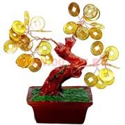 Денежное дерево №3 (17см) золото