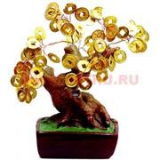 Денежное дерево №4 (19см) золото