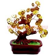 Денежное дерево №5 (22см) золото