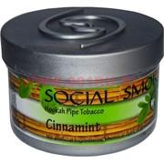 "Табак для кальяна Social Smoke 250 гр ""Cinnamint"" (USA) мята корица"