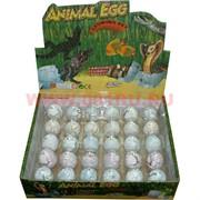 Растущие животные из яйца большие, цена за 40 штук
