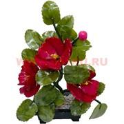 Китайская Роза (Пионы)