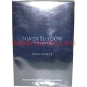 """Туалетная вода Davidoff """"Silver Shadow Private"""" 100 мл мужская"""