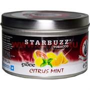 """Табак для кальяна оптом Starbuzz 250 гр """"Citrus Mint"""" (цитрусовые с мятой) USA"""