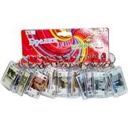 Брелок (KL-260) рубли в пластике, цена за 120 шт (1200 шт/кор)