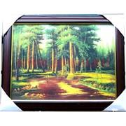Картина 35х45 в ассортименте, 24 шт/кор