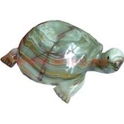Черепаха 25 см, оникс (10 дюймов)