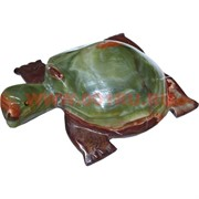 Черепаха 20 см, оникс (8 дюймов)