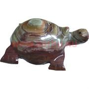 Черепаха 12-13 см, оникс (5 дюймов)