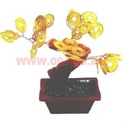 Денежное дерево 9 см (MF-1) золотое