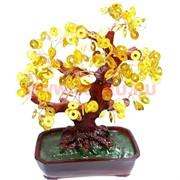 Денежное дерево 25см золотое