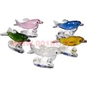 Кристалл «Дельфины» 5х7,5 см (5 цветов)