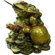 Нэцке, жаба с черепахами