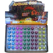 Растущие животные из яйца, цена за 60 шт (RS-05) 2880 шт/кор